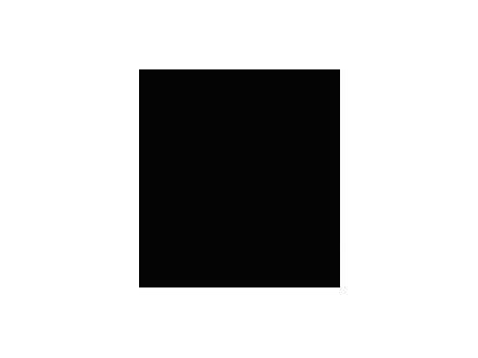 TAPIOCA-DA-BAIANA-logo